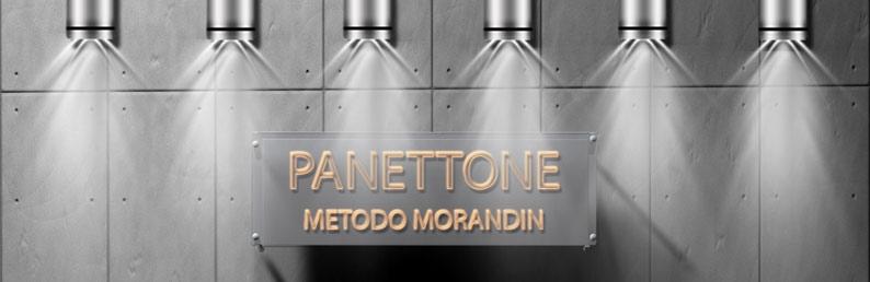 panettone-head